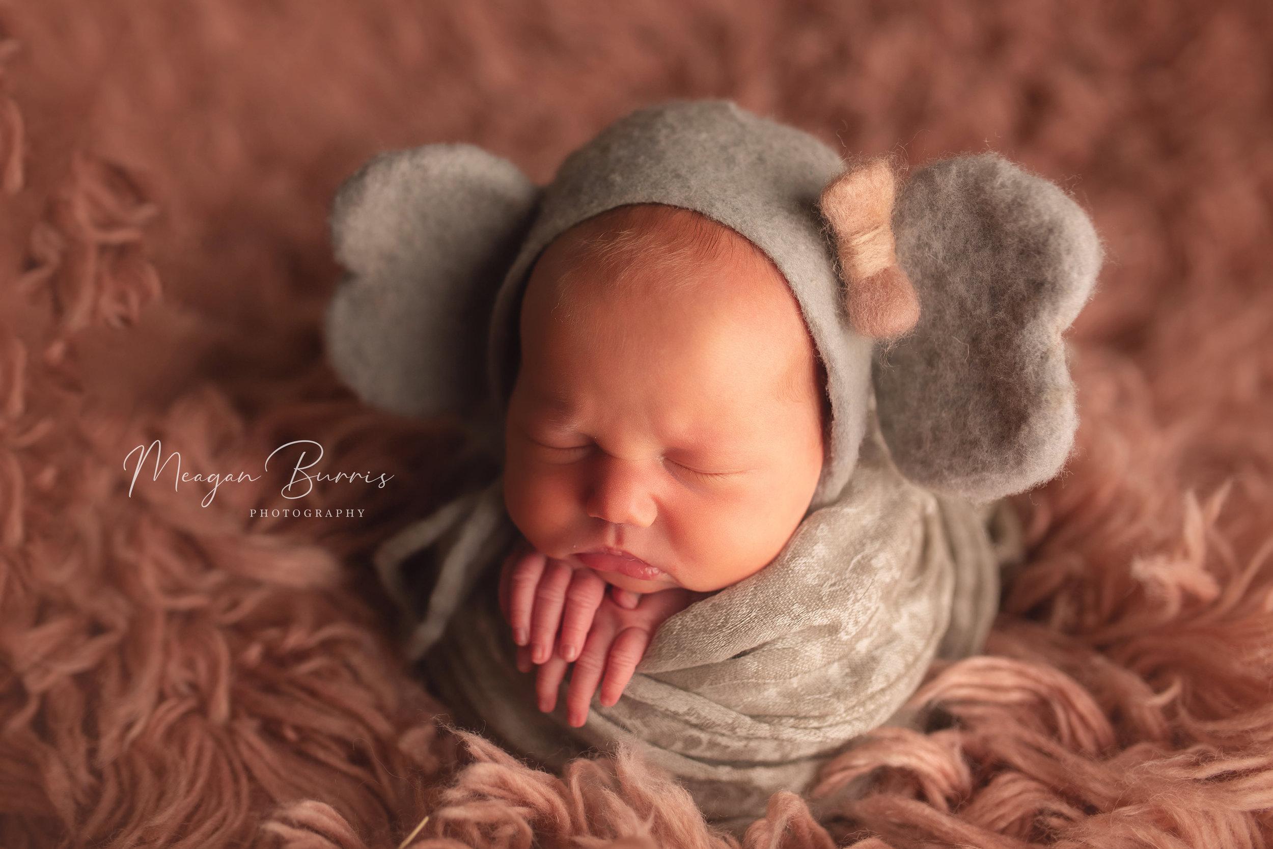 vera_rose_carmel indiana newborn photographer3.jpg