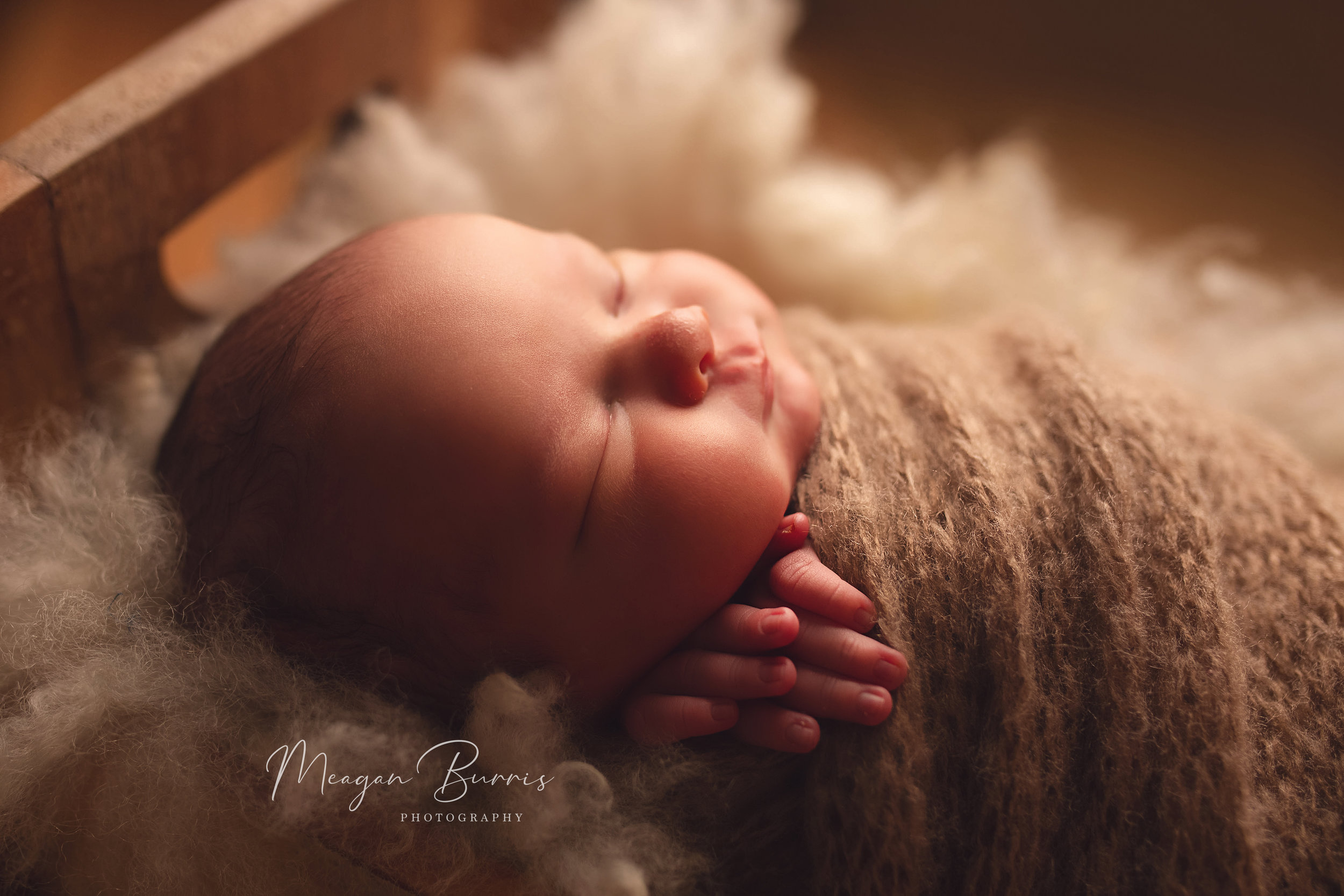 ford_ mooresville, in newborn photographer129.jpg