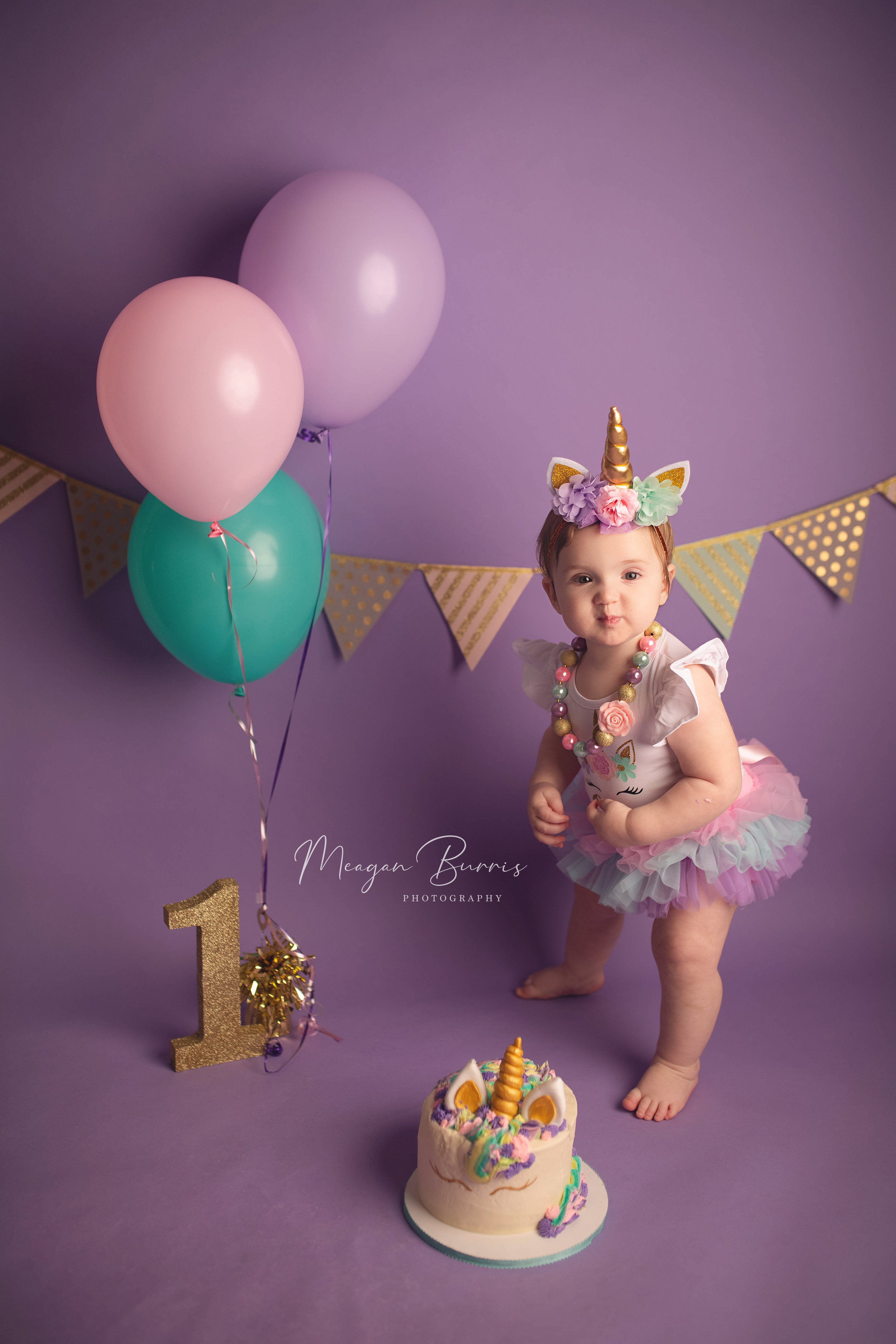 lucyC_indianapolis, in first birthday photographer2.jpg