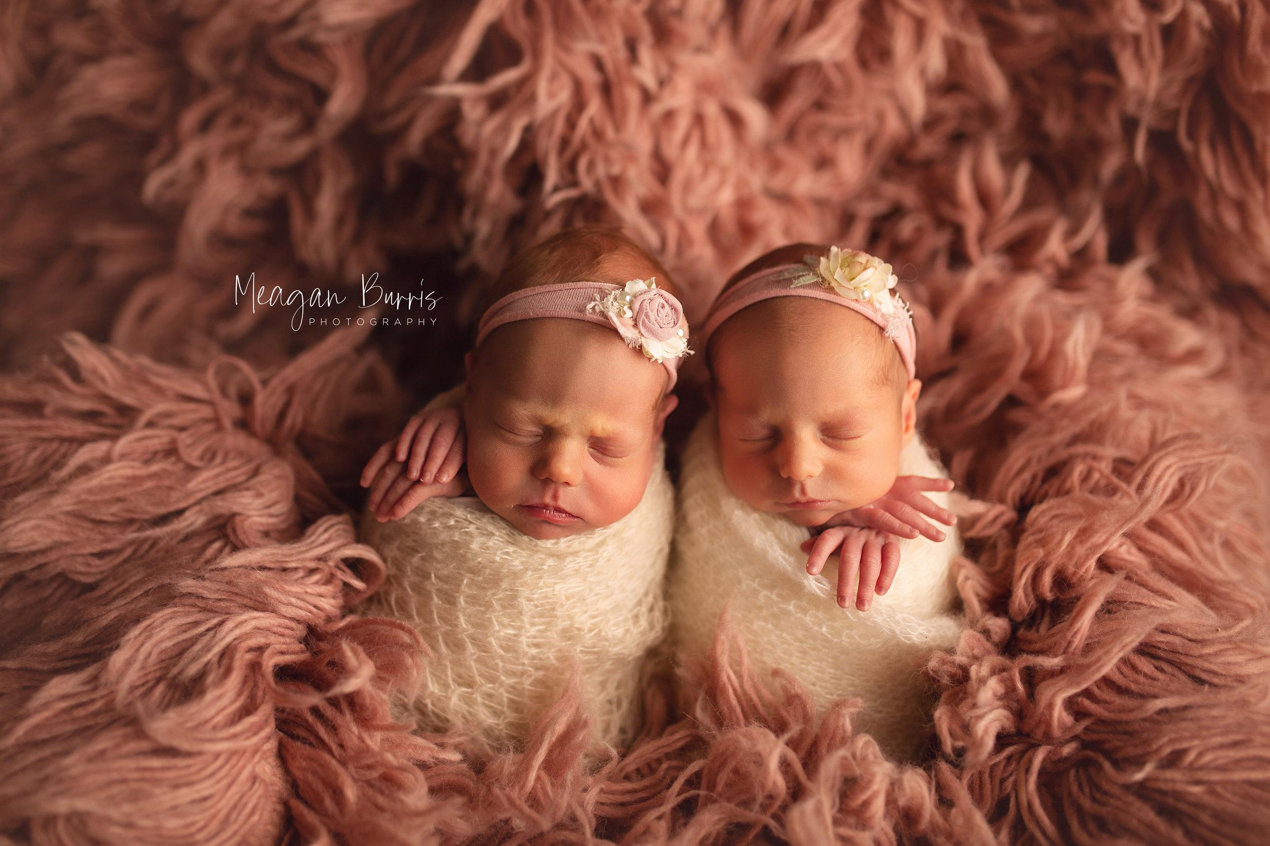 wolf twins_ greenwood newborn photographer4.jpg