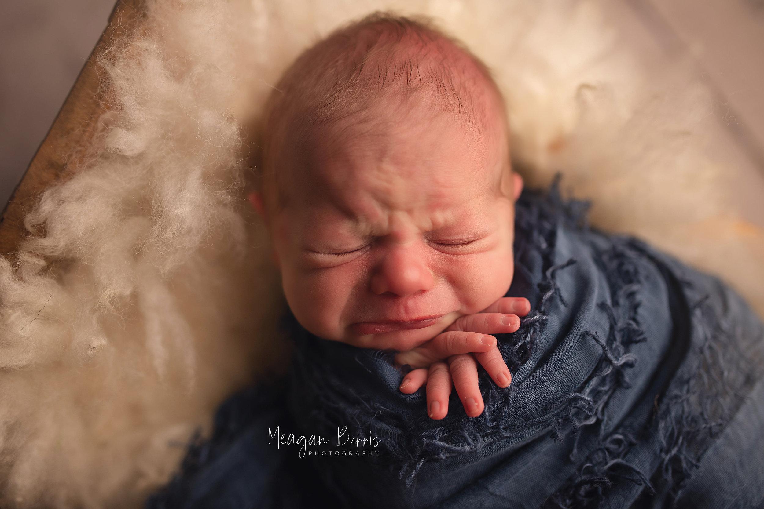 william_ indianapolis newborn photographer4.jpg