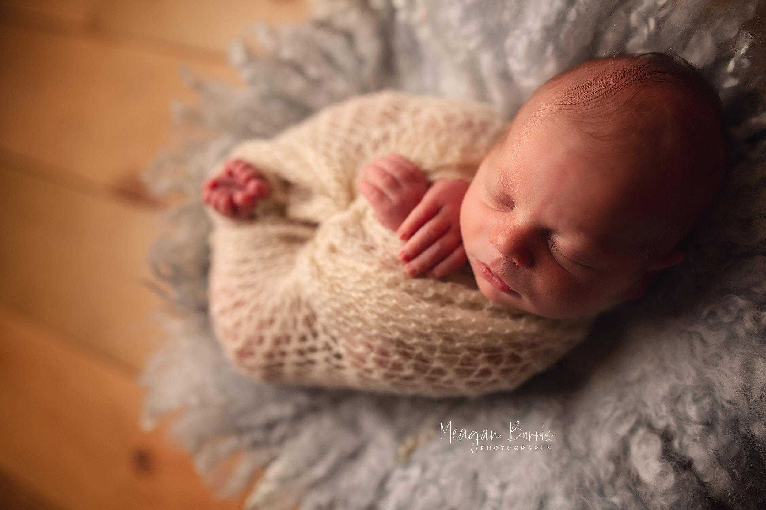 william_ indianapolis newborn photographer5.jpg