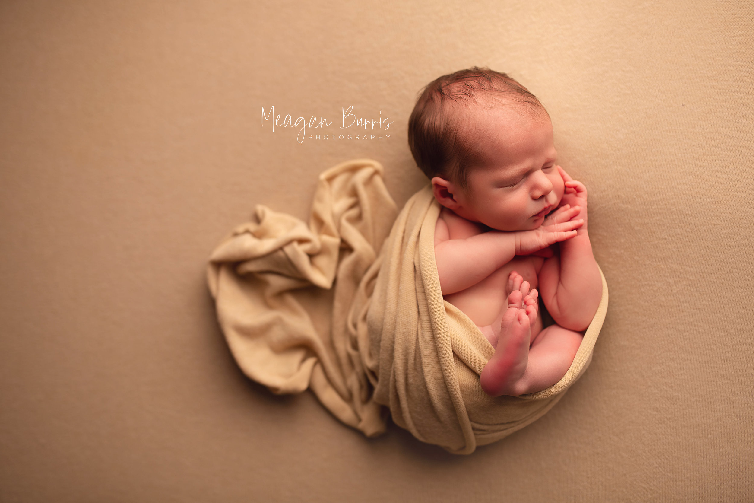 gentryL_ new palestine newborn photographer5.jpg