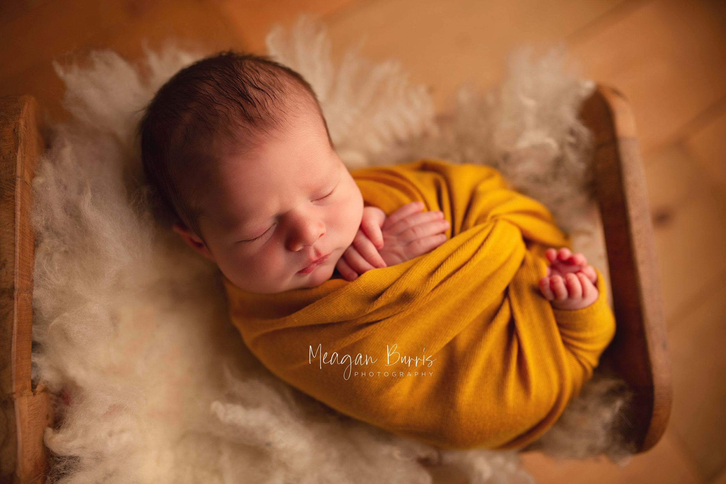 gentryL_ new palestine newborn photographer8.jpg