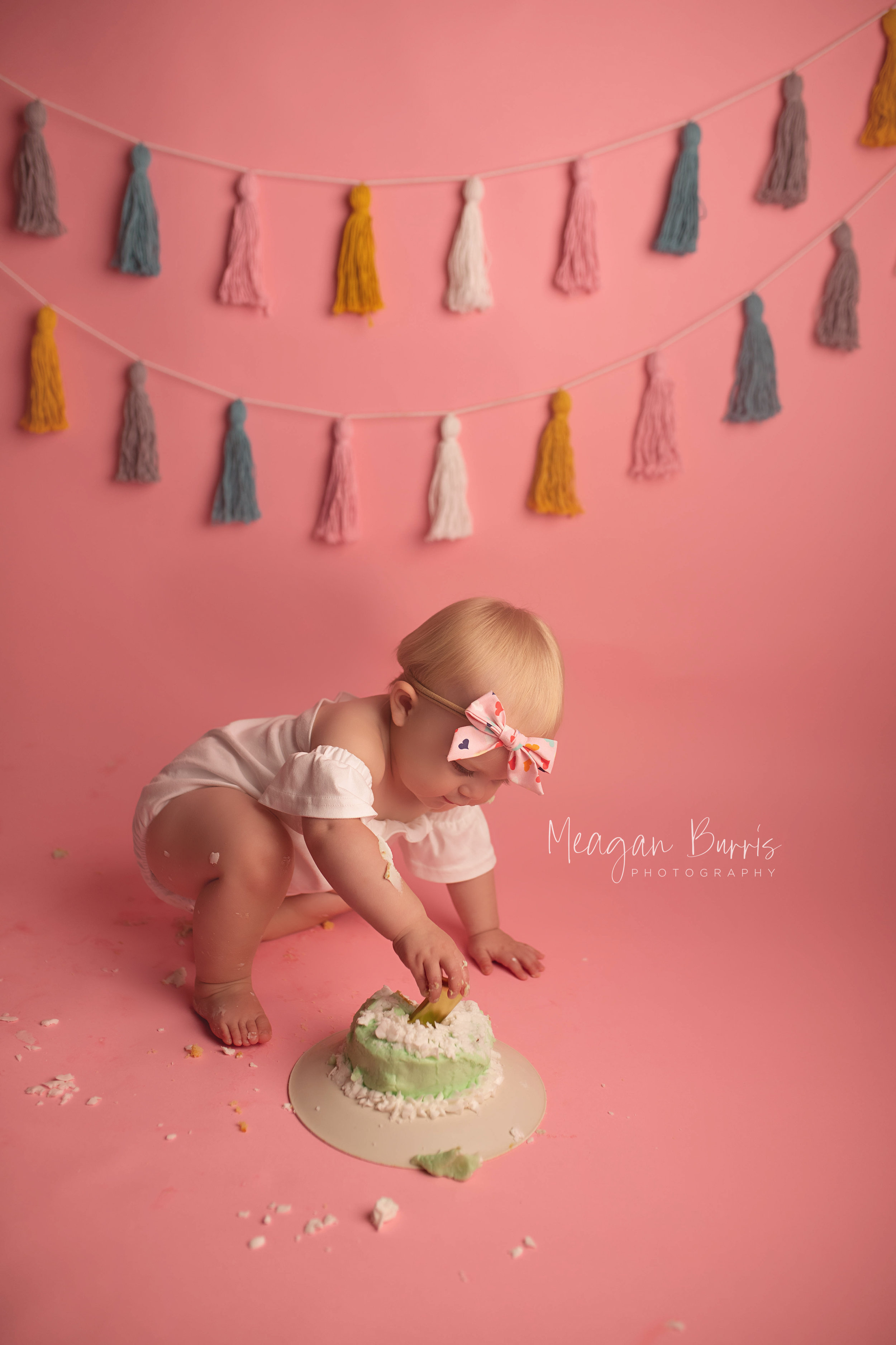 ellie_ indianapolis first birthday photographer3.jpg
