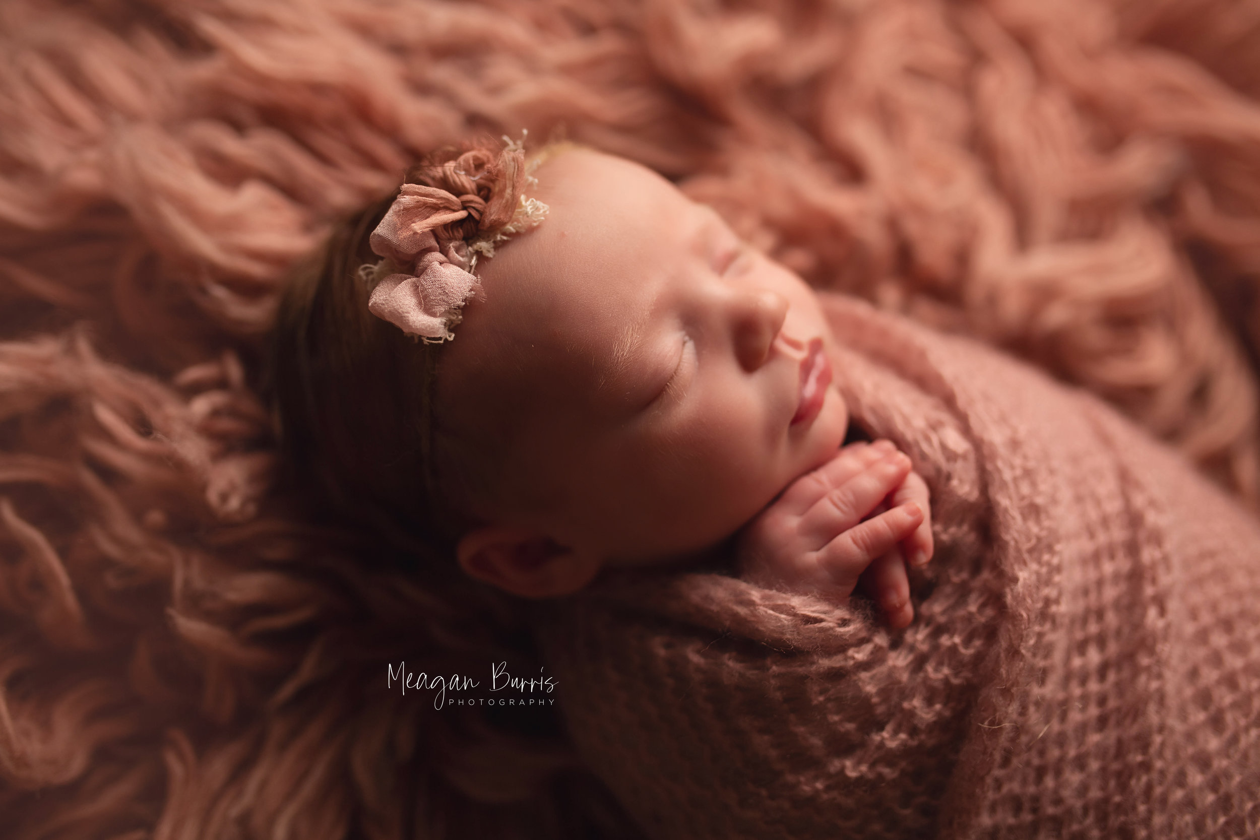 whitley_ mooresville newborn photographer2.jpg
