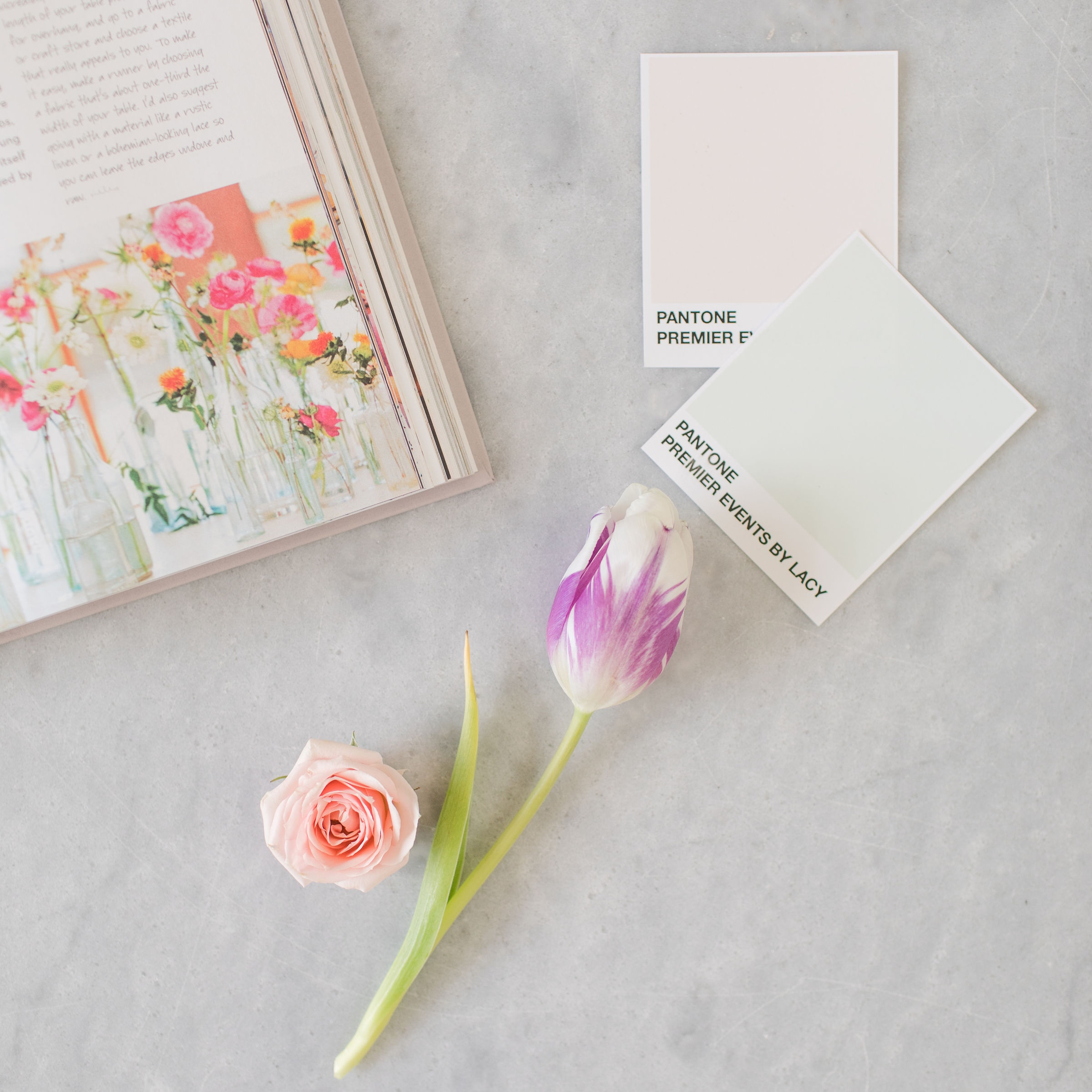 STATIONARY ASSISTANCE - From invitation suites to ceremony programs, we can help you choose the right textures and colors for your wedding stationary.