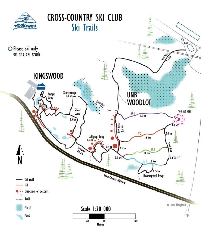 Cross Country Ski Trail Map.png