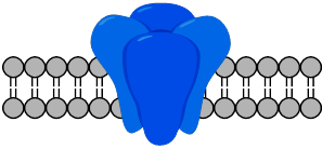 channel_logo_small.png