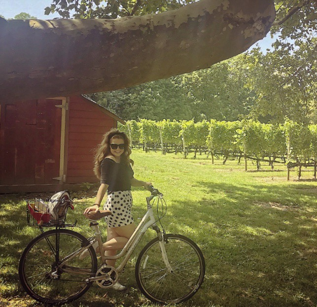 bike vineyard.jpeg