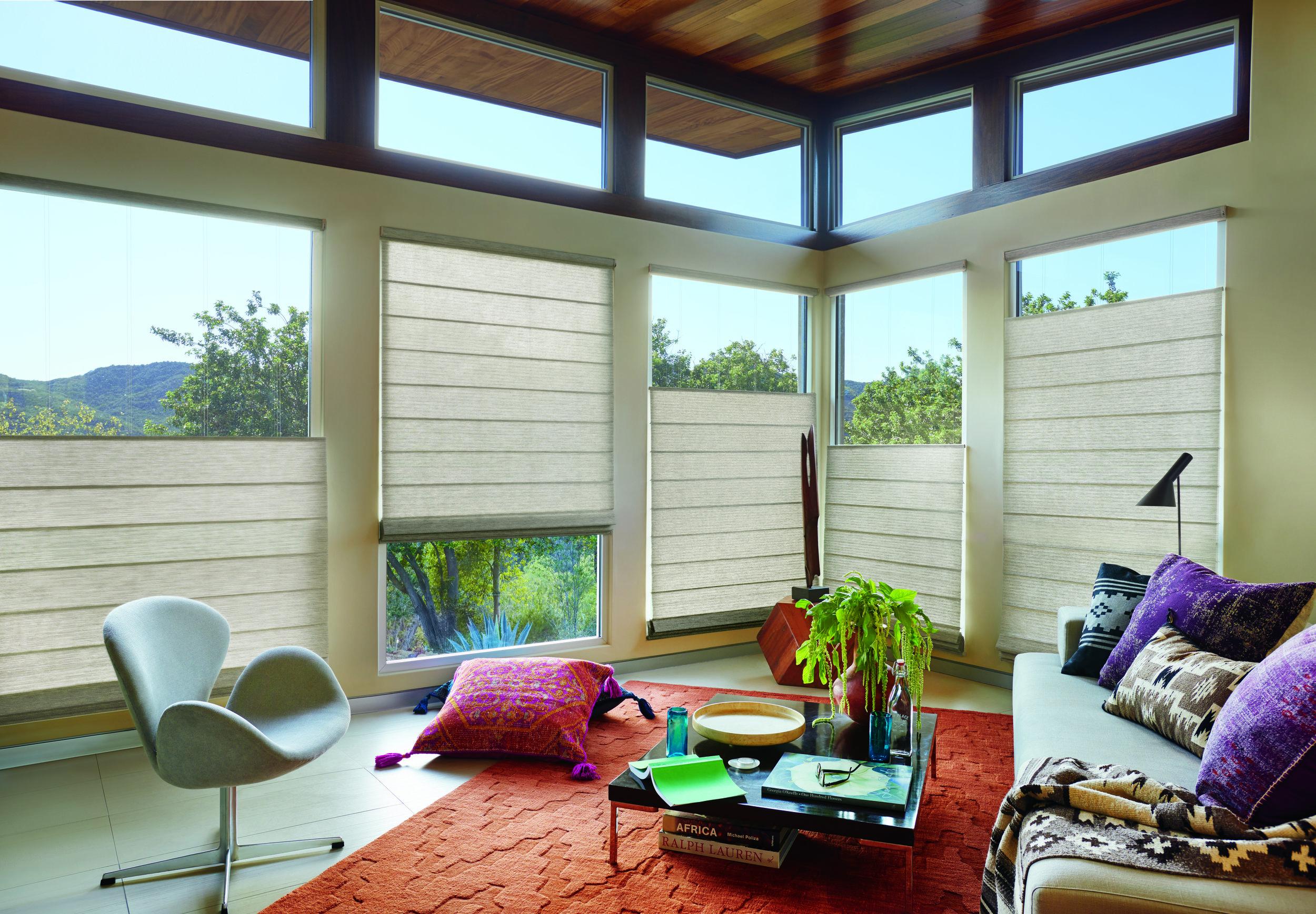 2016_ALU_WT_Primitive_Living Room_After .jpeg