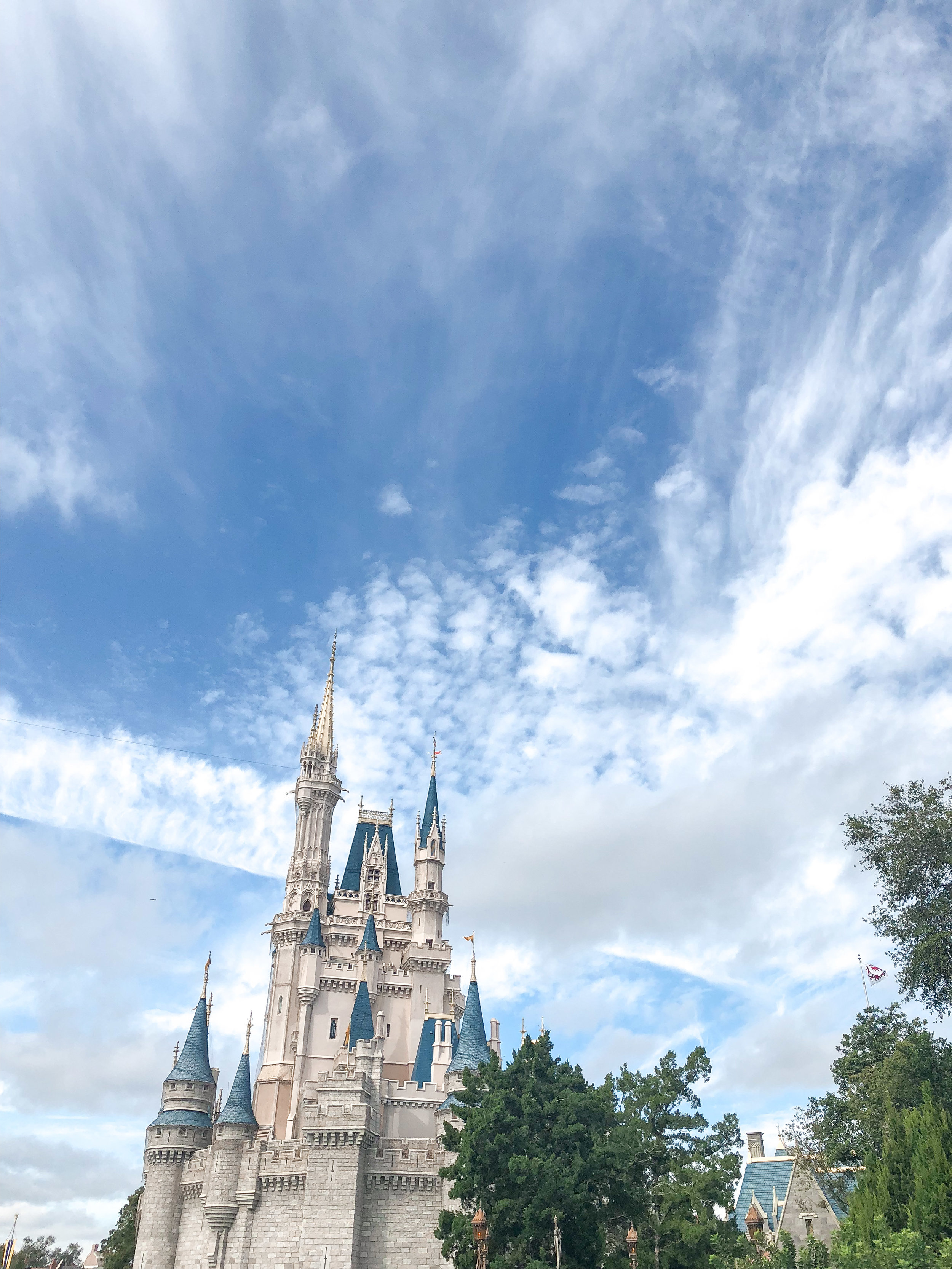 The prettiest sight you ever did see - Cinderella Castle at Disney's  Magic Kingdom .