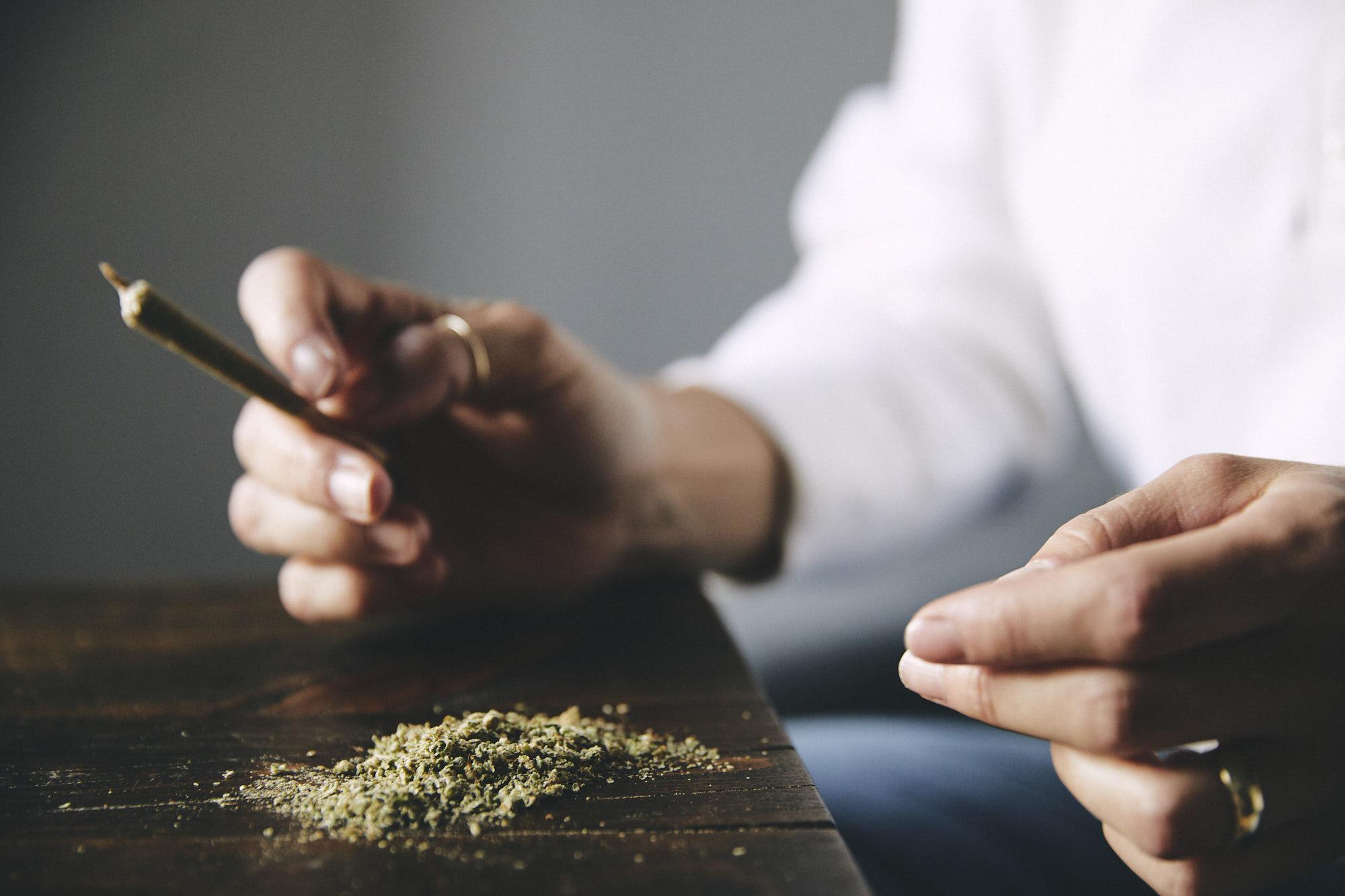cassandrahope_cannabis2.jpg
