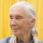 "Dame Jane Goodall - Primatologist, founder Jane Goodall Institute and UN Messenger of Peace""The concept of Ecocide is long overdue. It could lead to an important change in the way people perceive – and respond to – the current environmental crisis."""