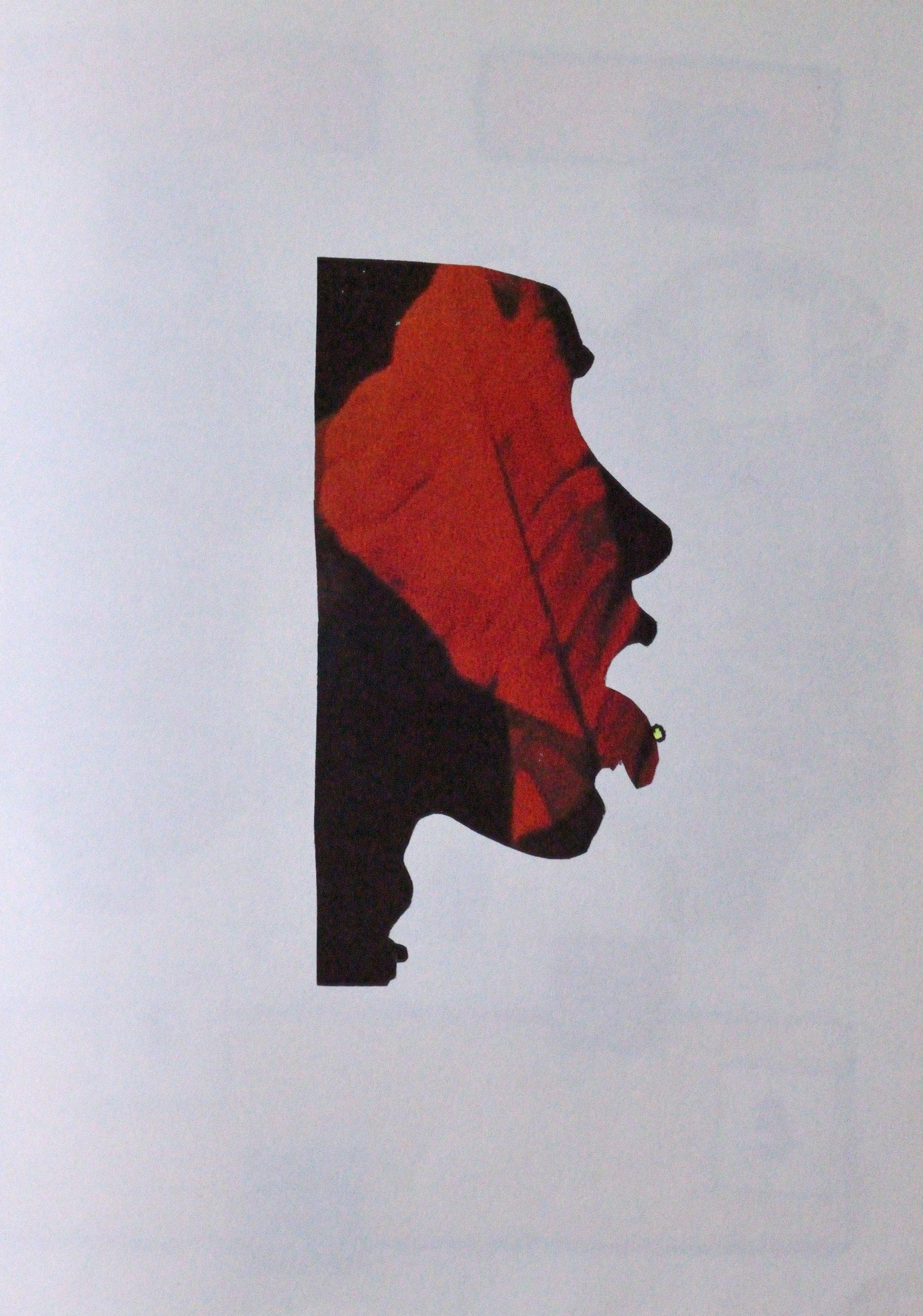 't Wonderboeck 8, 30x21cm, mixed media on paper