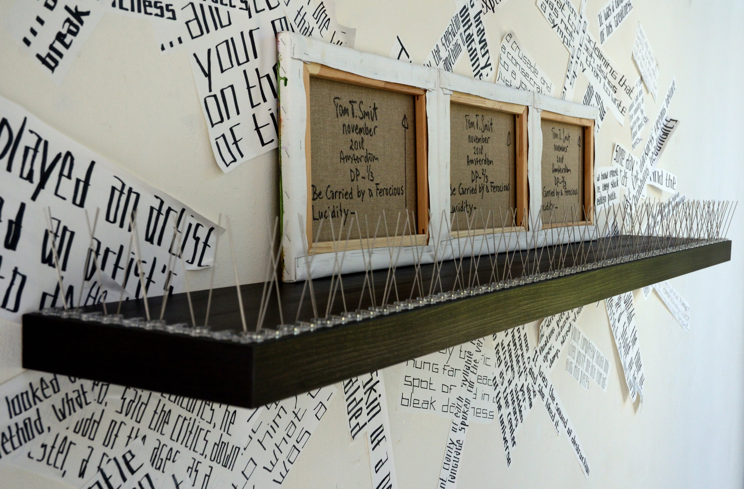 21. Absolutes Make the Heart go Flounder (close-up), shelf with anti-pigeon spikes, reverse canvases and text, ca.150x320cm, 2019.JPG