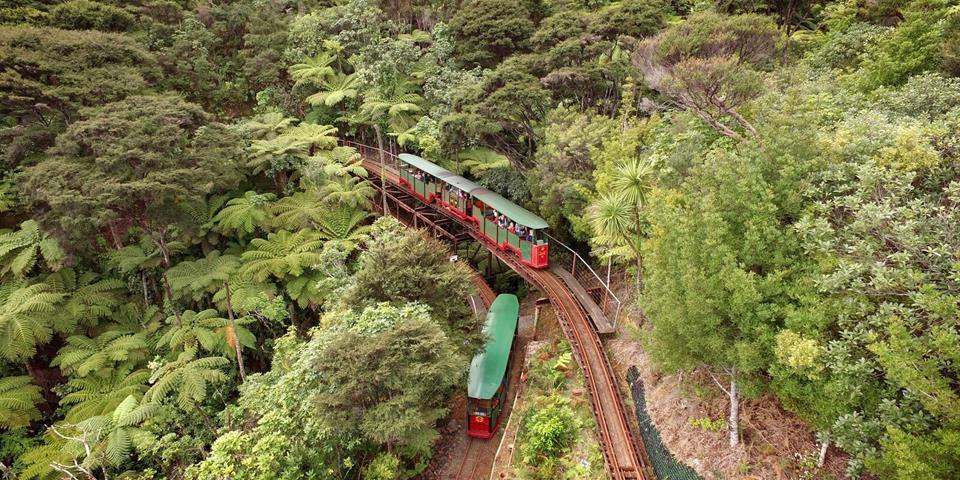 Driving Creek Railway.jpg