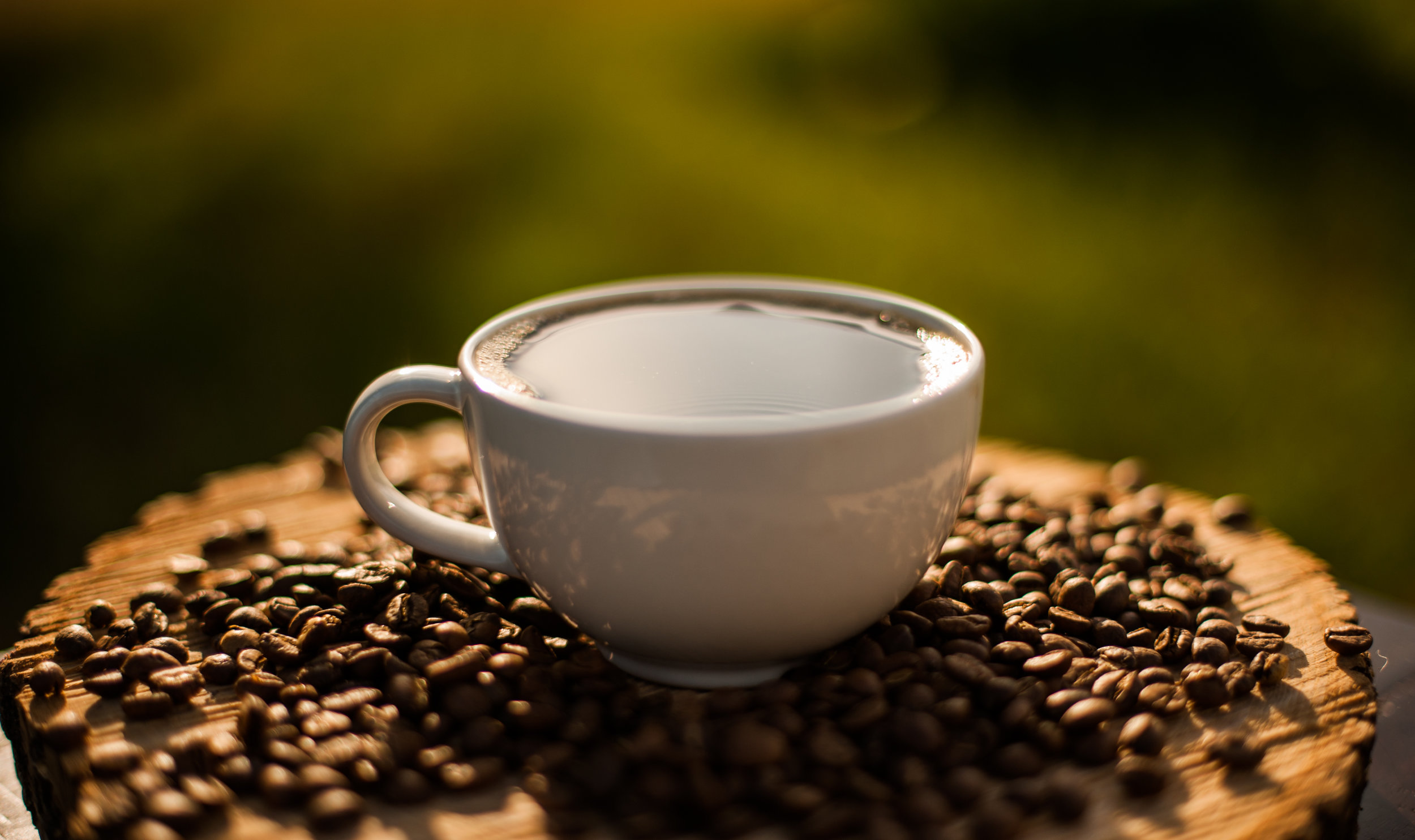 old_man_sullivans_coffee_co_jtp2019-30.jpg