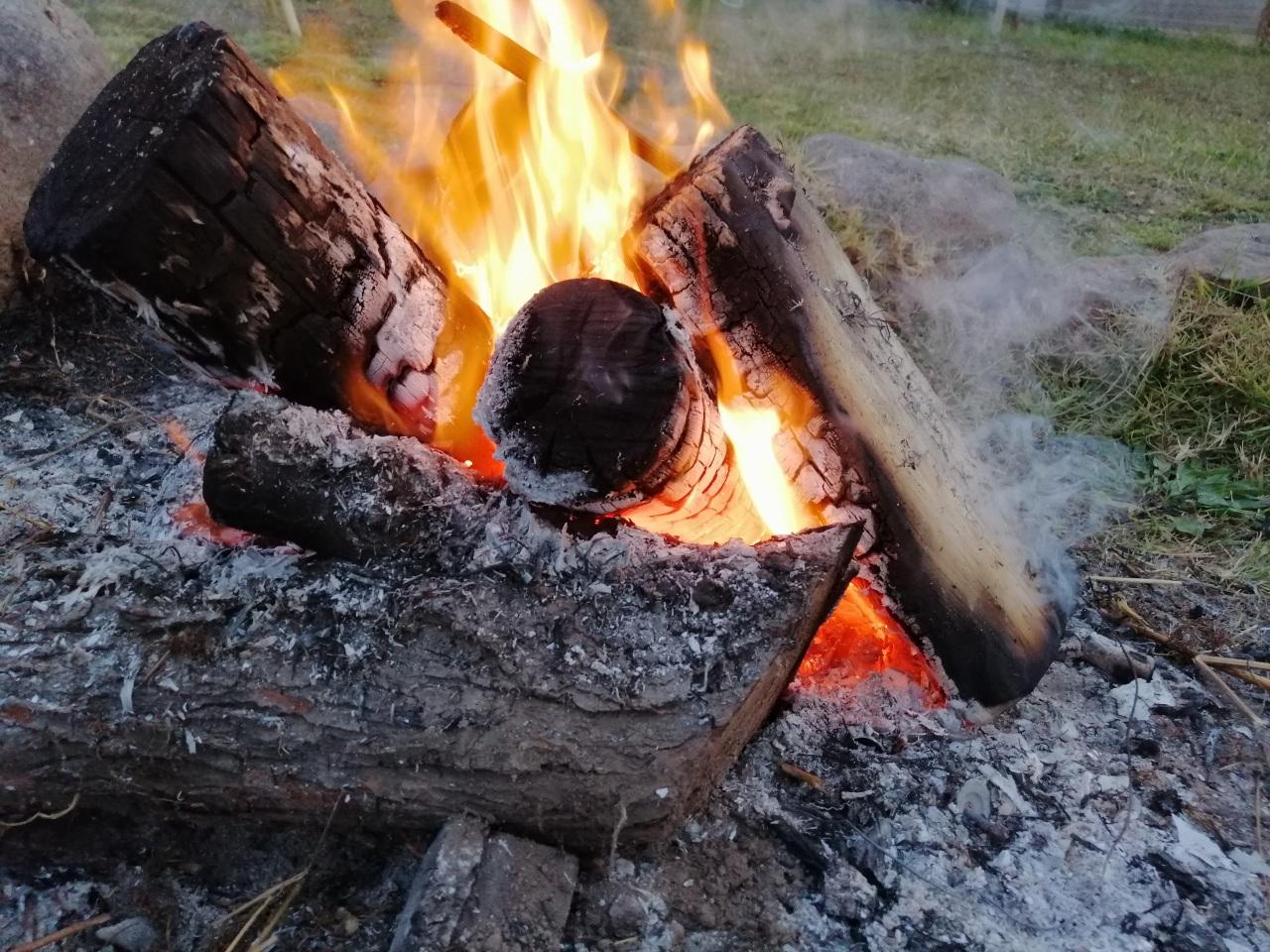 Cocinar en una fogata: - quedar con olor a humo tiene su encanto. Un picoteo de verduras, unos plátanos asados, todo tiene mejor sabor cocinado al aire libre.