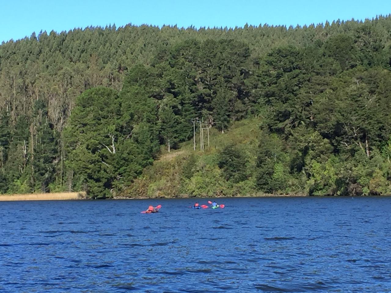 Imposible aguantarse - una vuelta por estos ríos y con este sol de invierno. En Río Vivo arrendamos los kayak y nos propusieron un lindísimo recorrido por los humedales del río Ancachilla