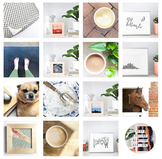 Ashleigh's instagrem feed: coffee, needlepointing, Nugget, and horses