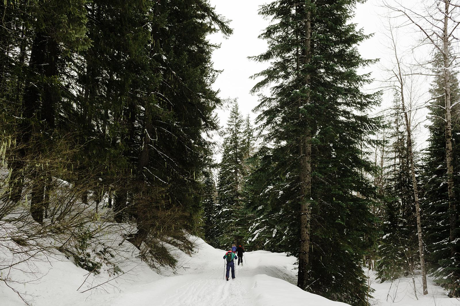 Washington - Leavenworth, February 2018