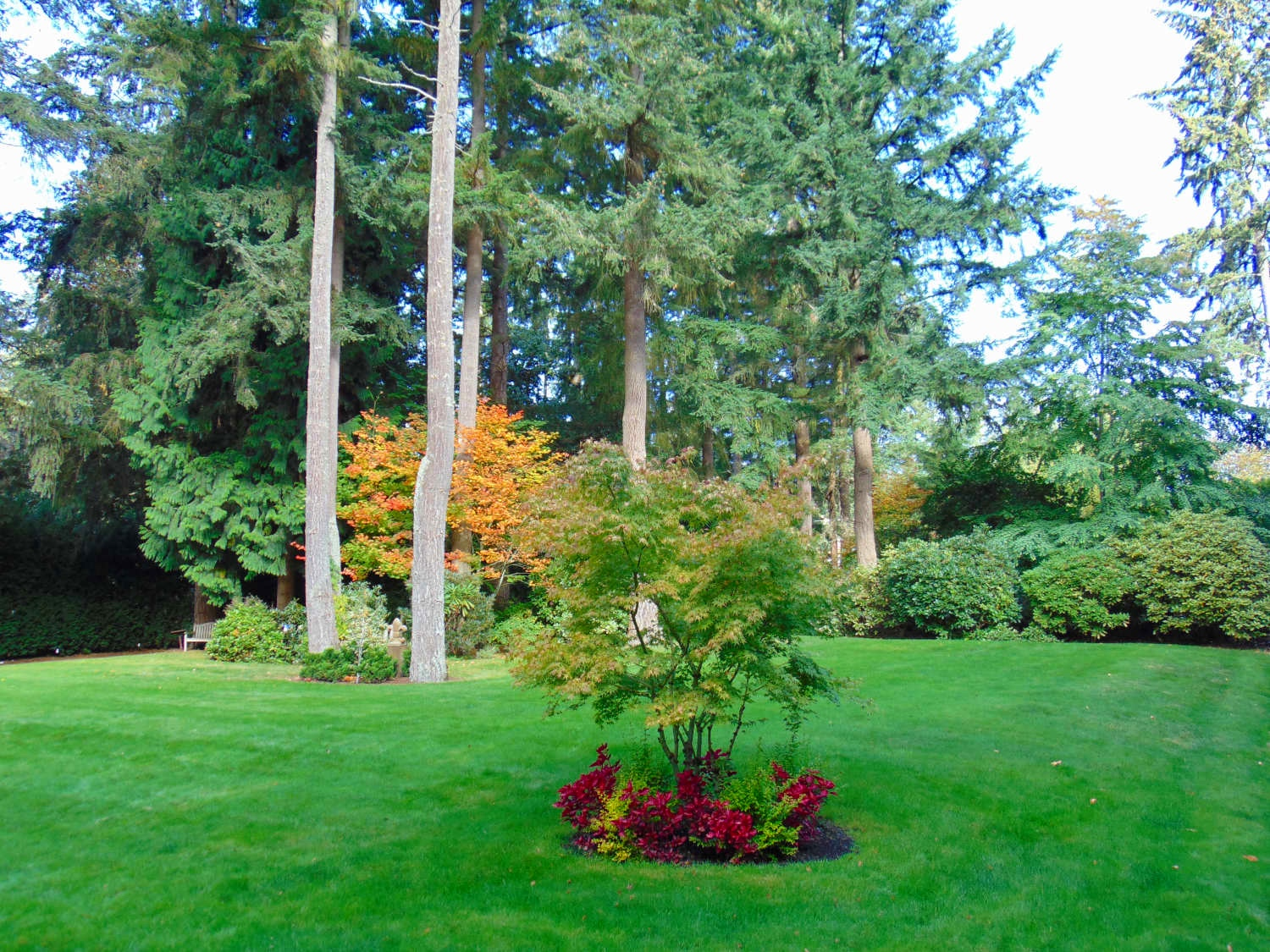 King+County+Lanscape+Design+and+Consultations+by+Jon+L+Shepodd+Landscaping.jpg