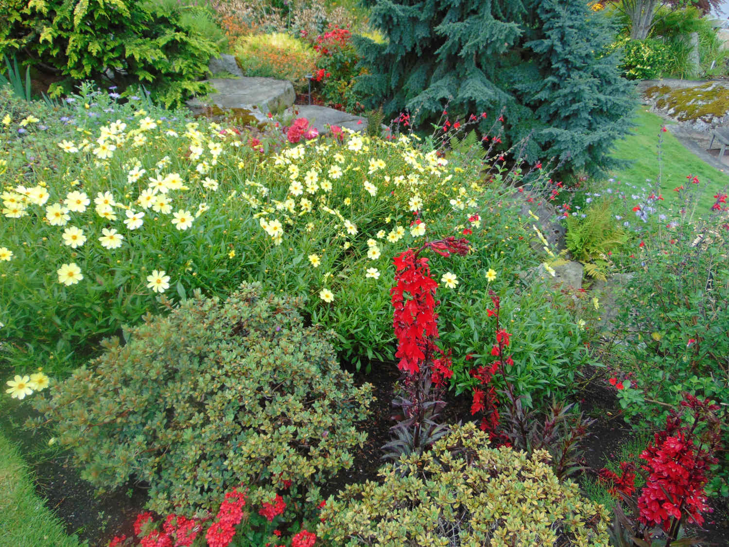 Seattle WA Lanscaping by Jon L Shepodd Landscaping.jpg