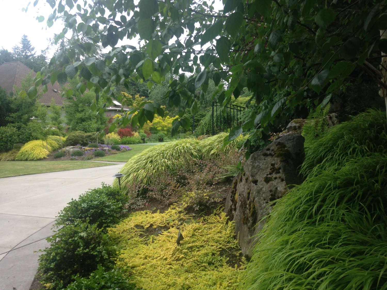 Landscape Design Bellevue WA by Jon L Shepodd Landscaping.jpg