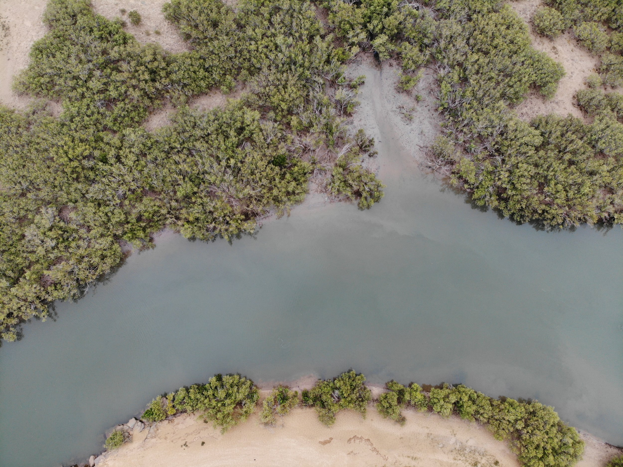 Aerial view of a creek within the Bay of Rest, Exmouth Gulf.