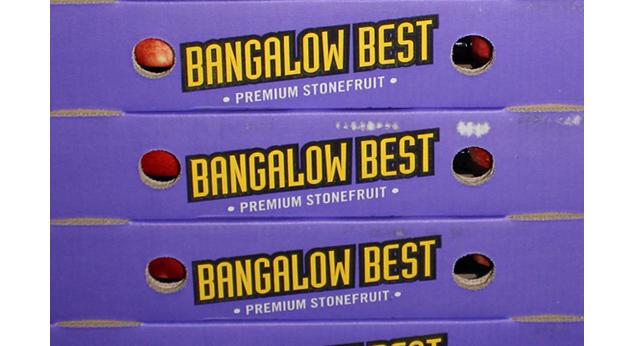 Bangalows Best2.jpg