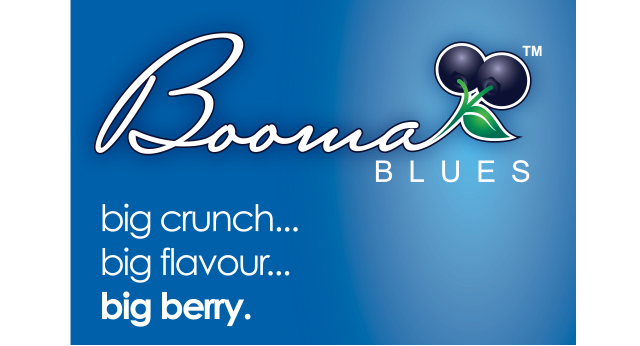 Booma Blues.jpg