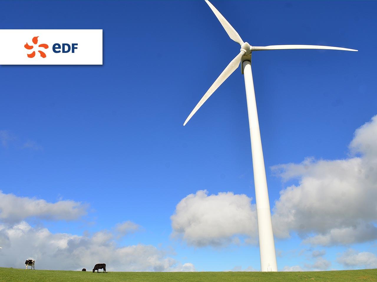edf-partenaire-TEDxParis.jpg
