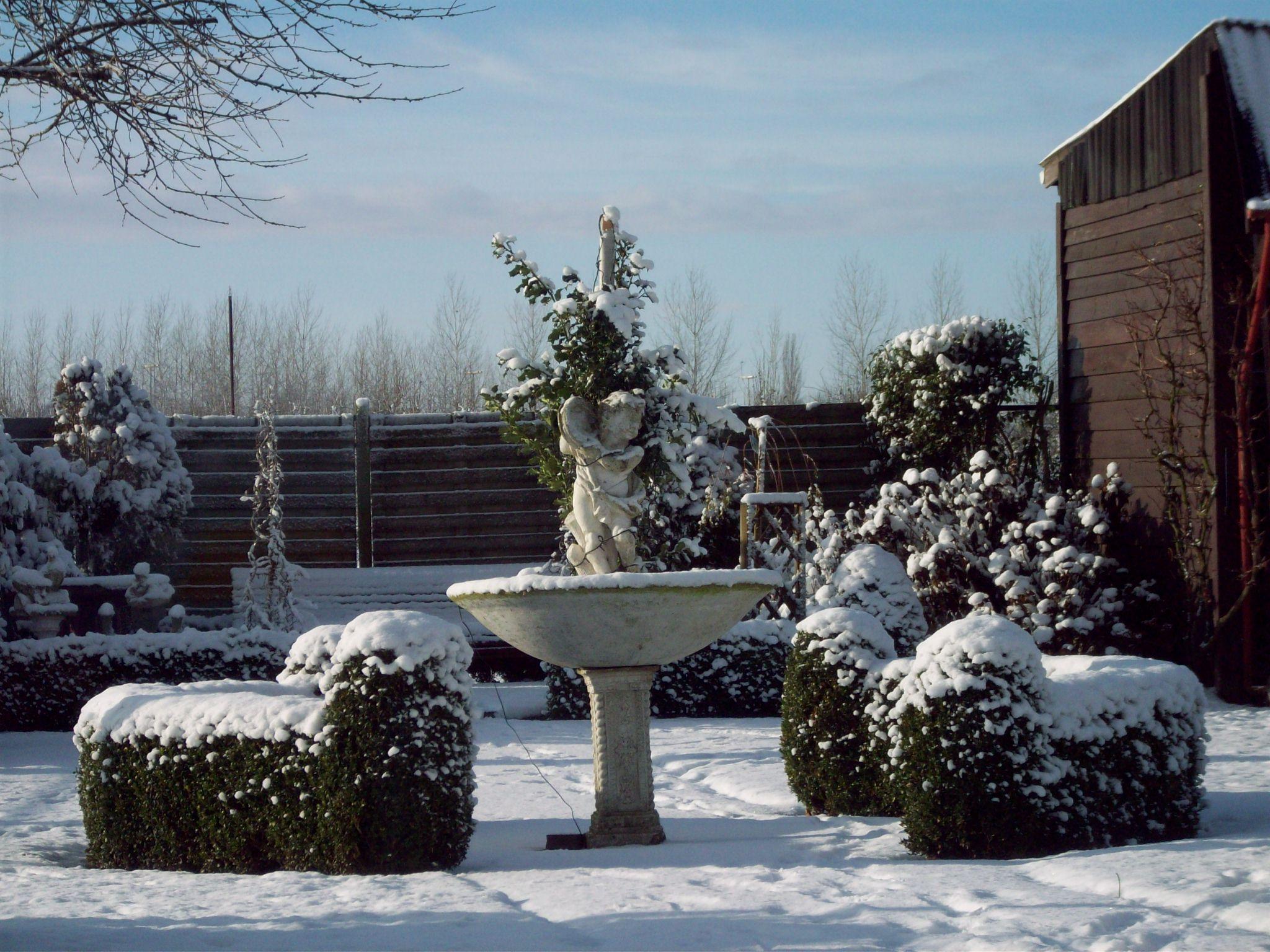 tuin B&B sneeuw.JPG