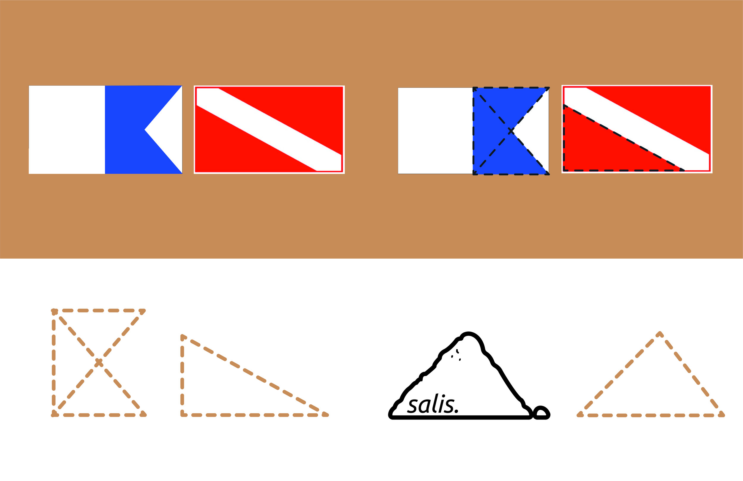 Salis_Logo1-06.jpg