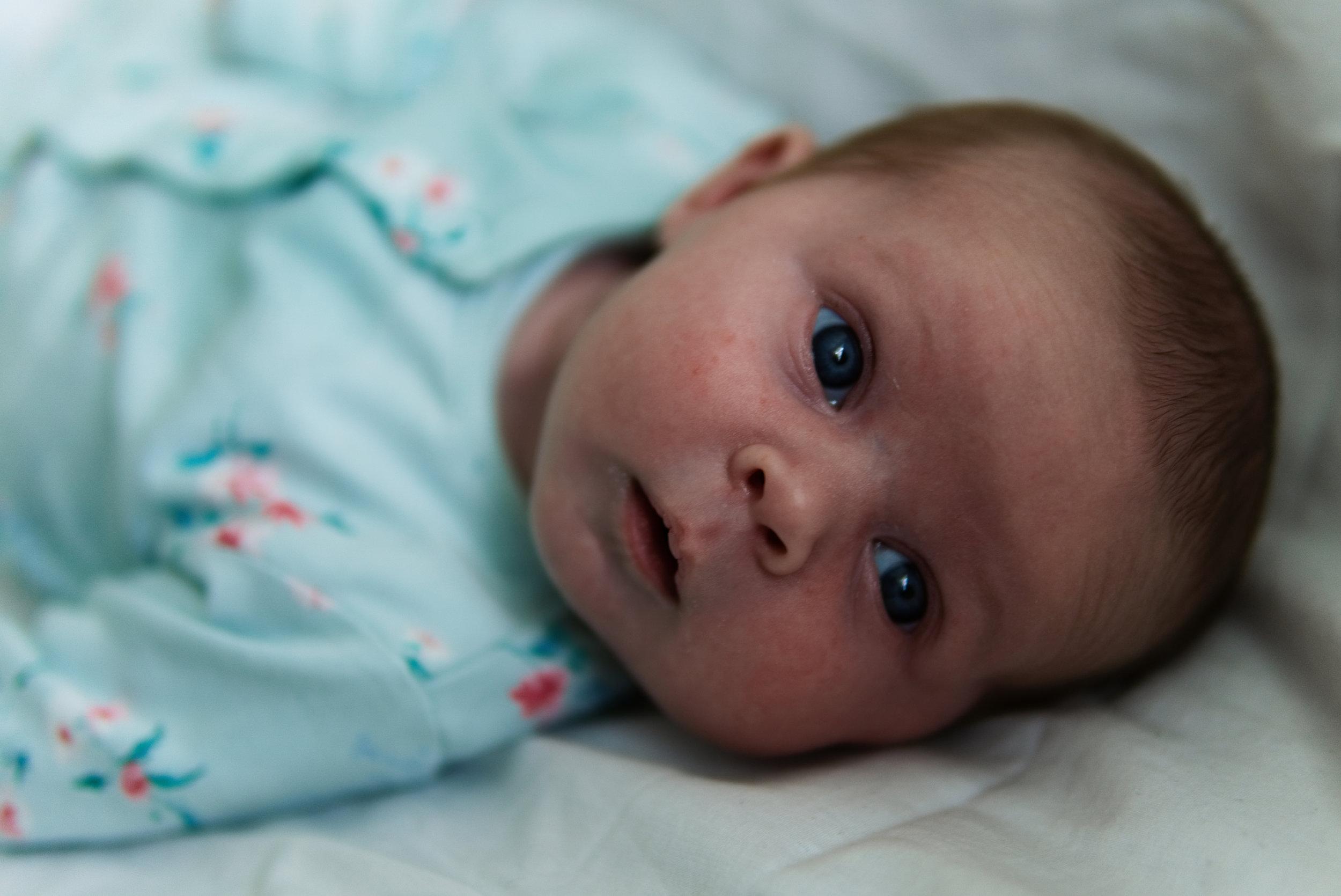 Copy of Kent Baby Photographer Luke Batchelor Productions