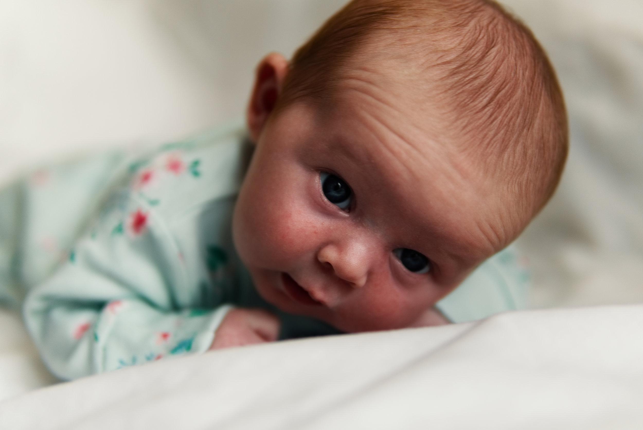 Copy of Newborn Photography by Luke Batchelor Productions