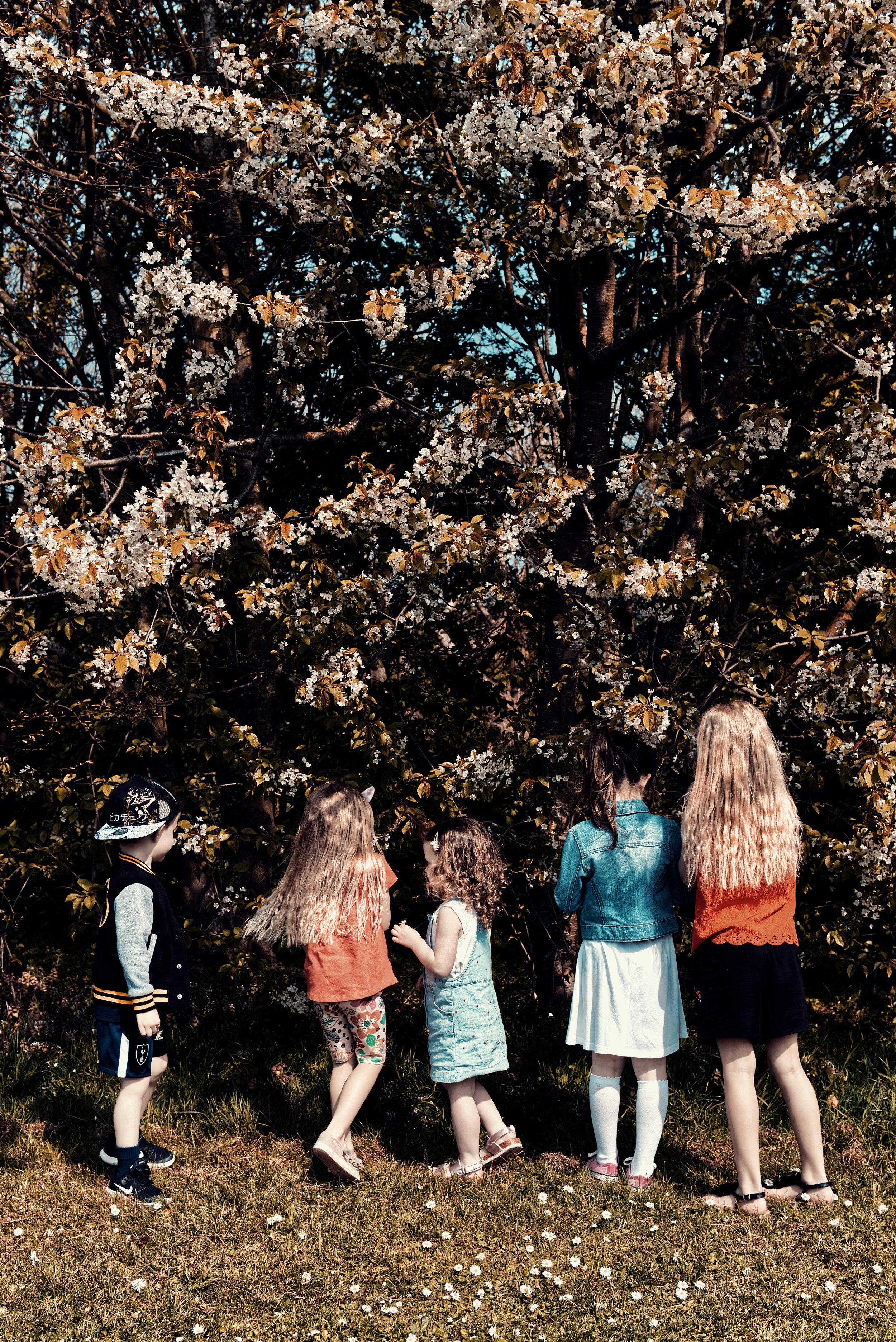 Childrens Photographer Luke Batchelor Productions