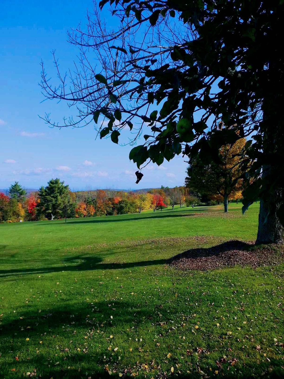 Golf & Tennis -