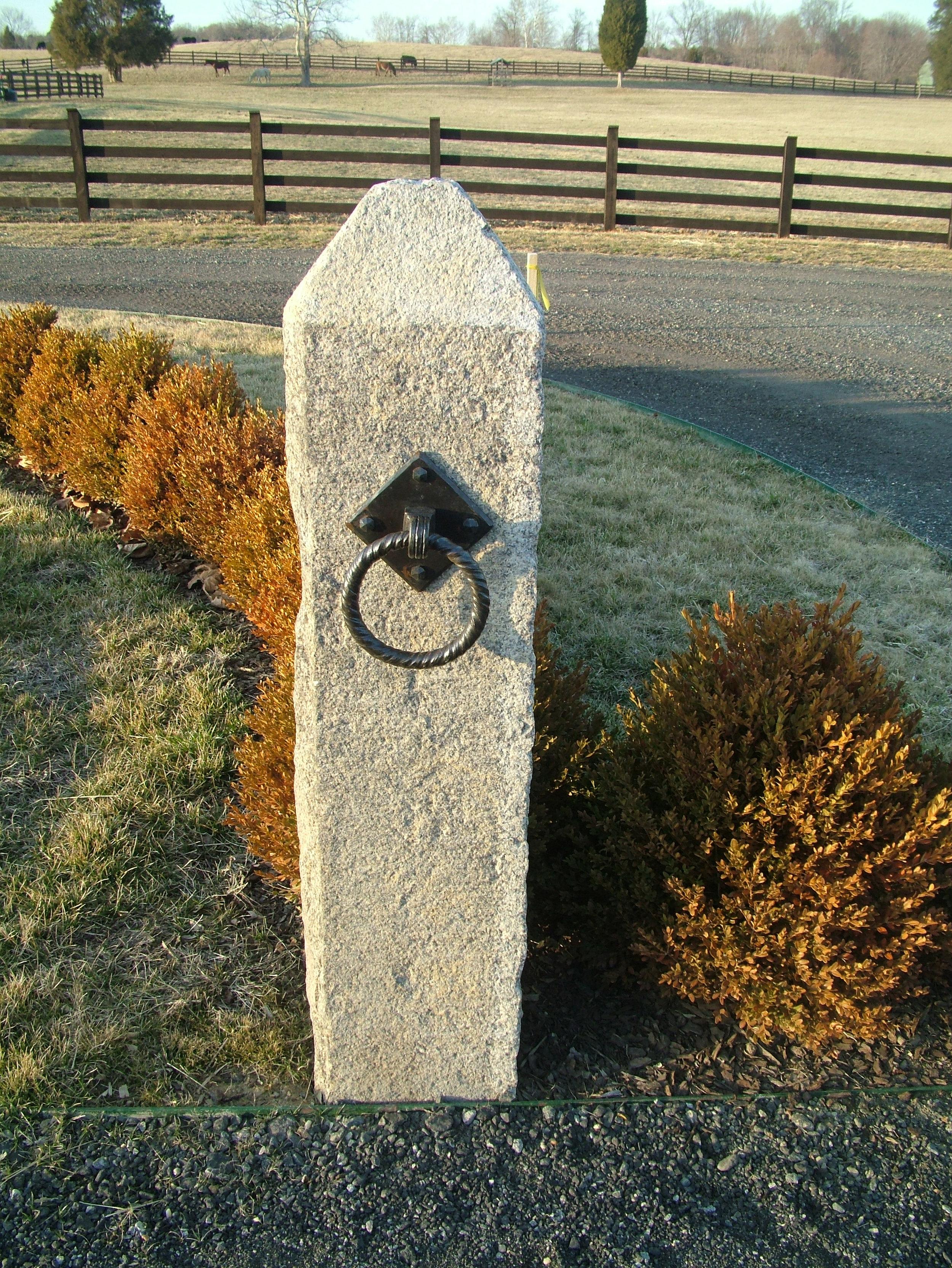 Horse Tie Ring