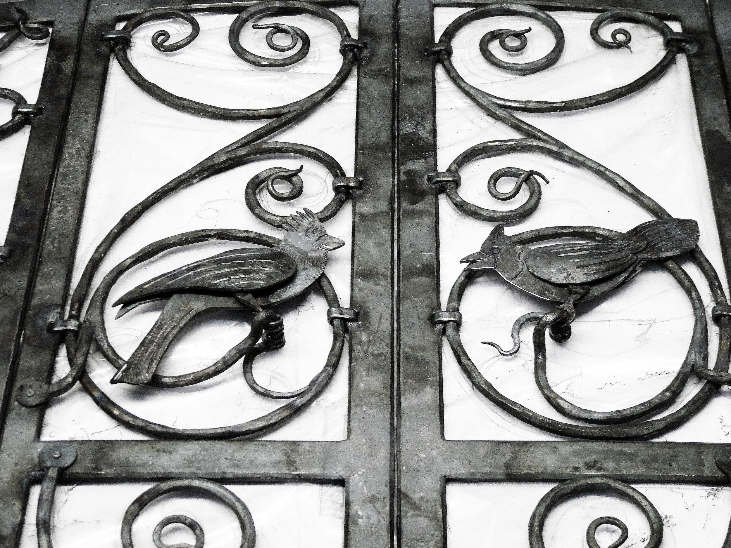 Bird details copy.jpg