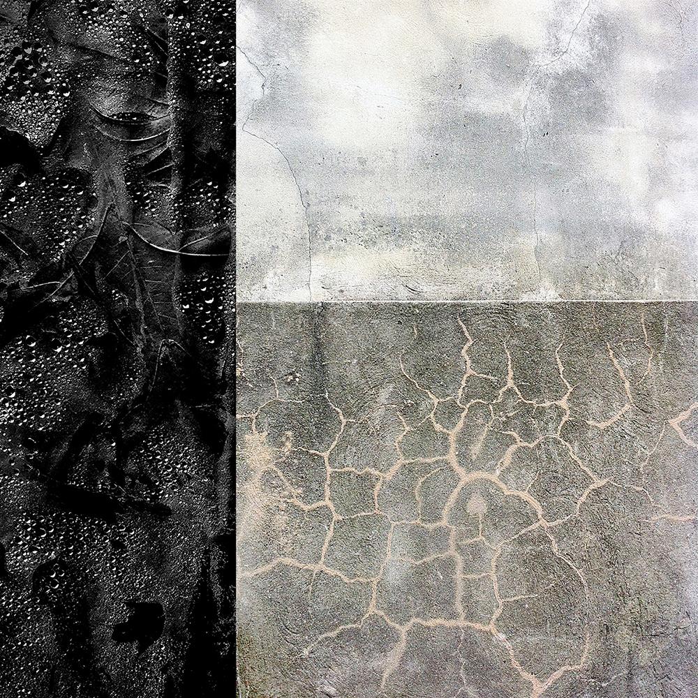 Ham_01-composition.jpg
