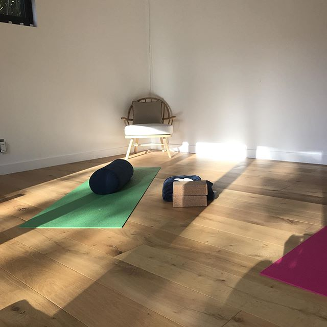 I love the few moments before a class starts, especially when the sun is shining in through the windows ☀️ Thursday mornings are a lovely class - great for those who are new or returning to yoga, or just want to work on mobility and stress relief. . Come along and breathe with me 🙏 . #gardenstudiostanford #breathe #yogafaringdon #yogawantage #yogastanfordinthevale #stanfordinthevale