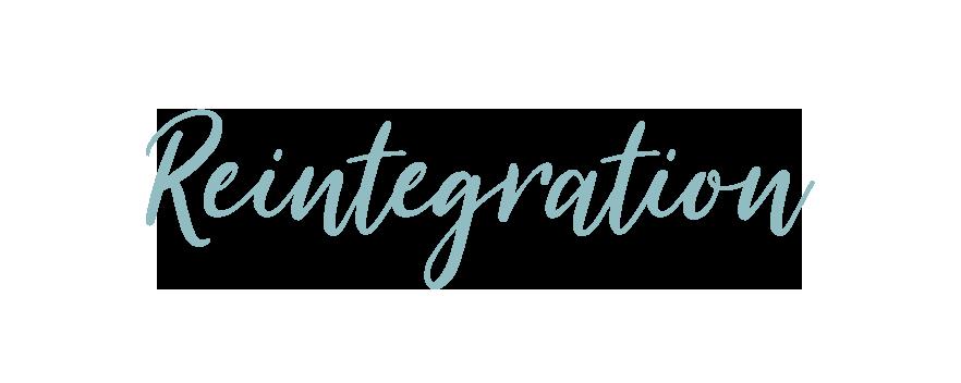 Text-Reintegration.png