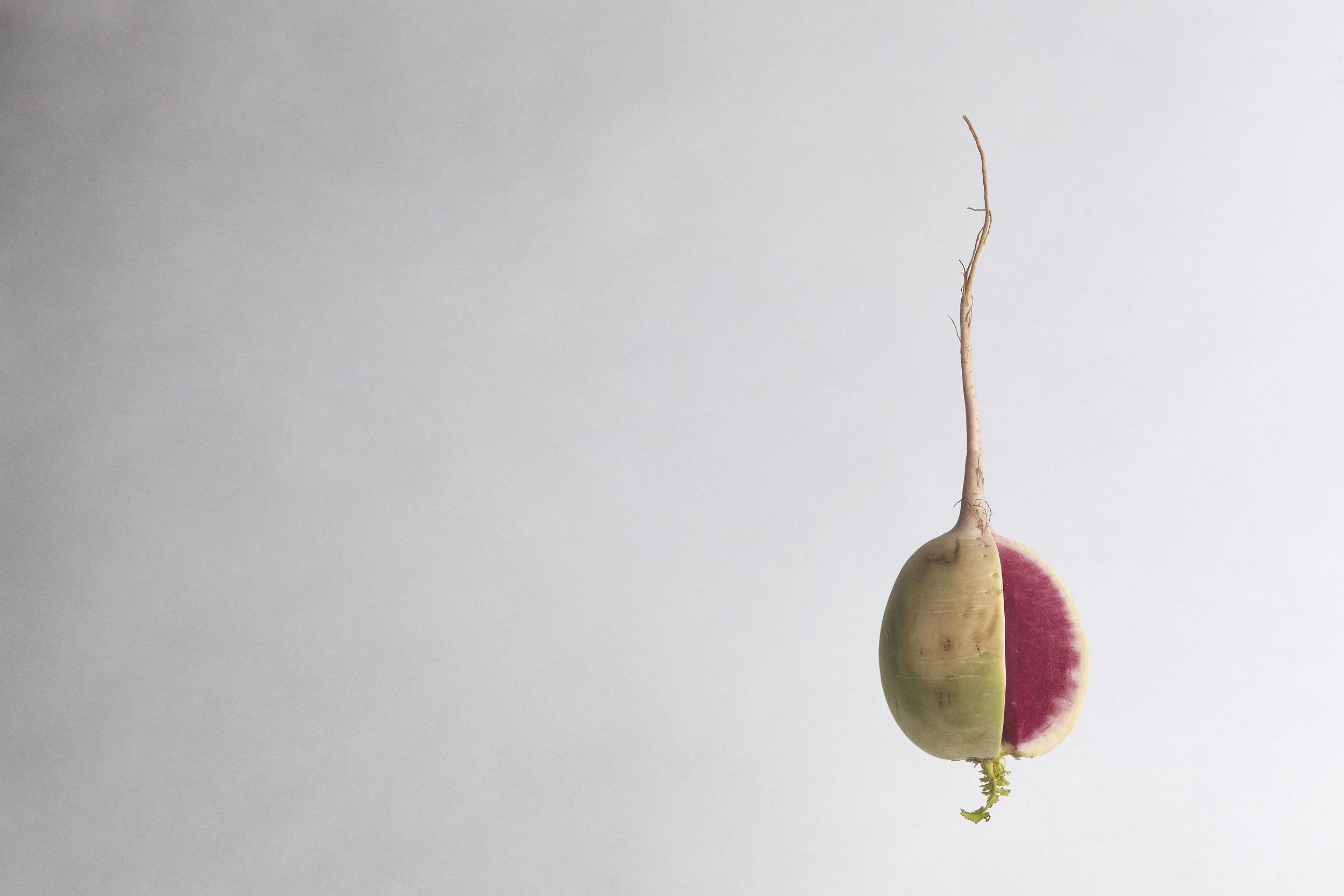 danielle-saler-photography-Watermelon-Radish-6000.jpg