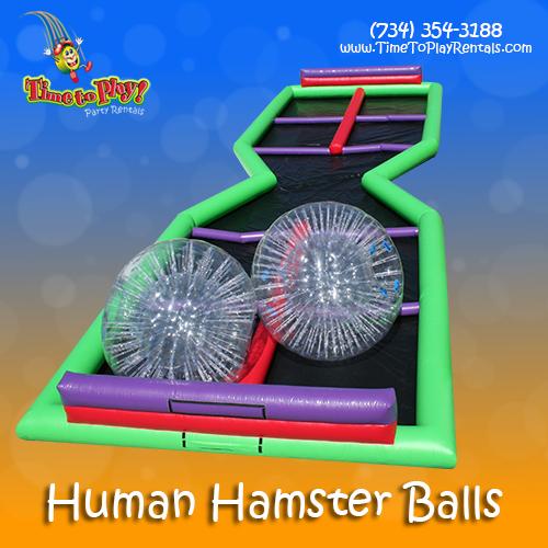 Human-Hamster-Balls.jpg
