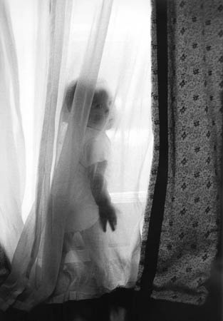 Stella Behind Curtains.jpg