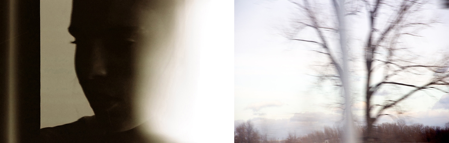 After autumn  (diptych), 2019