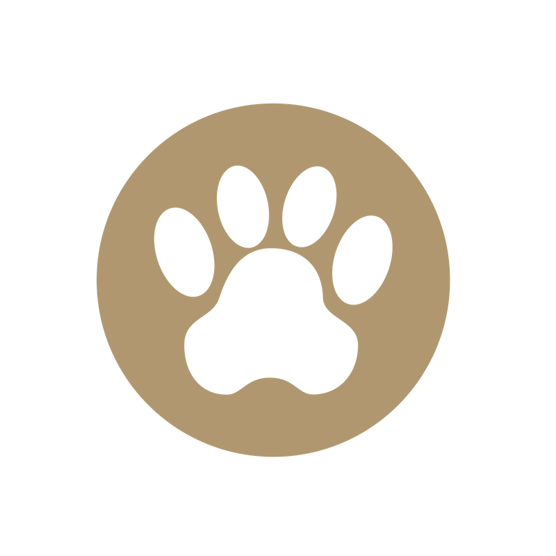 PET SITTING - Whether it's for a short or extended period of time, you can leave home with the peace of mind knowing that your pet and home are in good hands with fully customizable care designed around the individual needs for your pet.