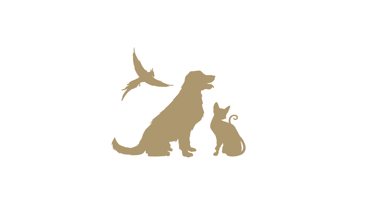 pampered pets no background.png